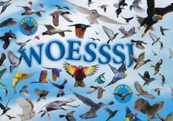 Woesssj - 9789025747336 - Fleur Star