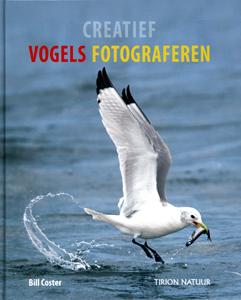 Creatief vogels fotograferen - 9789052107868 - Bill Coster