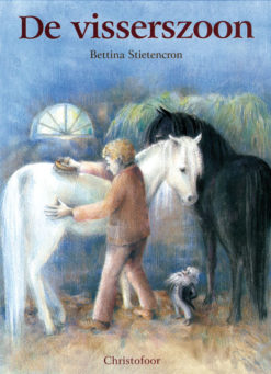 De visserszoon - 9789062386475 - Bettina Stietencron
