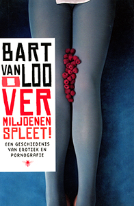 O vermiljoenen spleet - 9789085424956 - Bart van Loo