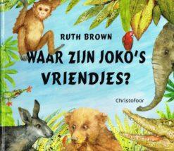 Waar zijn Joko's vriendjes? - 9789060386743 - Ruth Brown