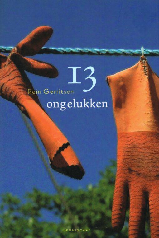 13 ongelukken - 9789047704591 - Rein Gerritsen