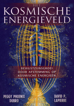 Het kosmische energieveld - 9789020284218 - Peggy Phoenix Dubro