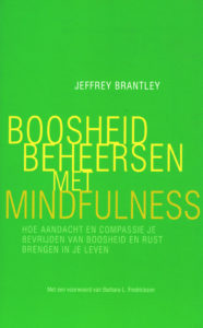 Boosheid beheersen met mindfulness - 9789057124266 - Jeffrey Brantley
