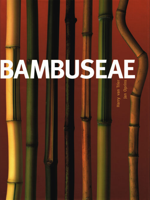 Bambuseae - 9789058561466 - Harry van Trier