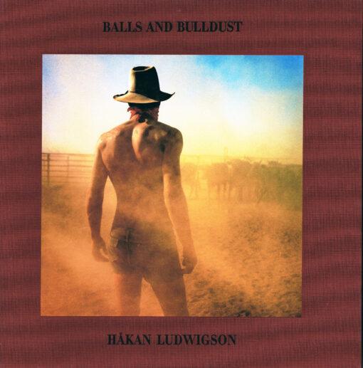 Balls and Bulldust - 9783869307077 - Håkan Ludwigson
