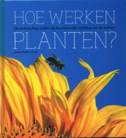 Hoe werken planten? - 9789085715009 - Linda Chalker- Scott