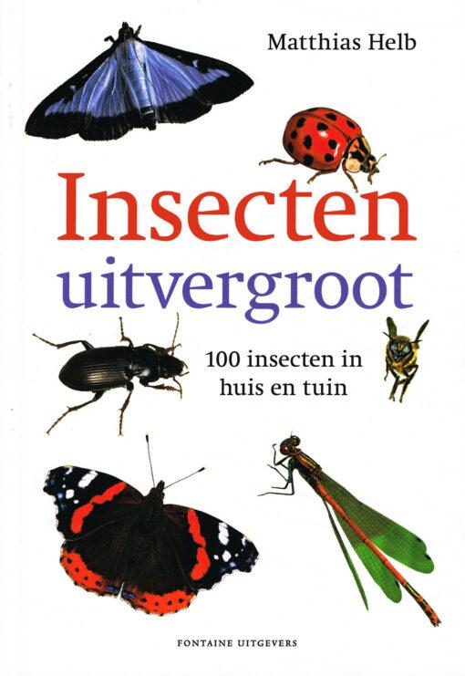 Insecten uitvergroot - 9789059567450 - Matthias Helb