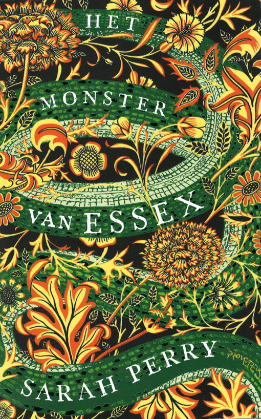 Het monster van Essex - 9789044634112 - Sarah Perry