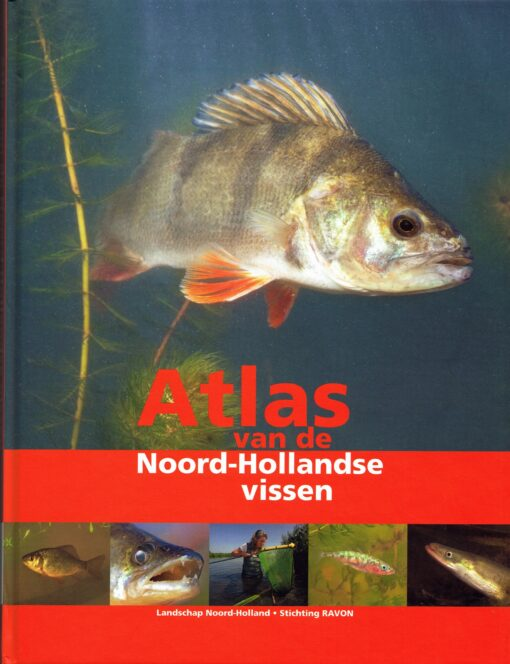 Atlas van de Noord-Hollandse vissen - 9789461901163 -
