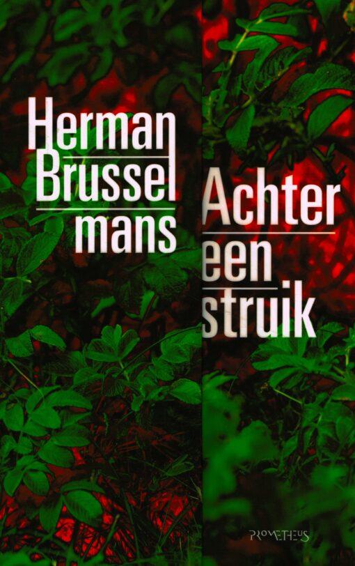 Achter een struik - 9789044637564 - Herman Brusselmans