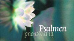 Psalmen in tweevoud - 9789023960515 -