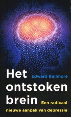 Het ontstoken brein - 9789044638851 - Edward Bullmore
