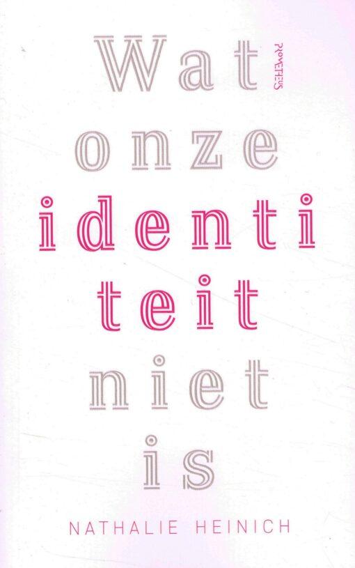 Wat onze identiteit niet is - 9789044641738 - Nathalie Heinich